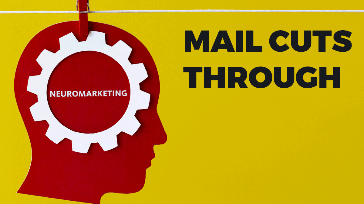 Royal Mail use neuroscience to prove how mail cuts through